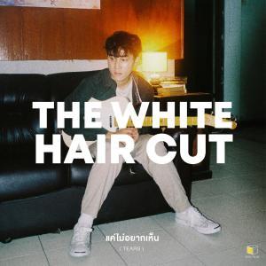 อัลบัม แค่ไม่อยากเห็น (Tears) - Single ศิลปิน The White Hair Cut