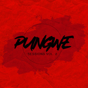 Album Pungwe Music from Pungwe Sessions