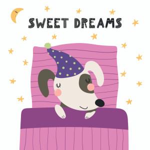 Lullaby Babies的專輯Sweet Dreams