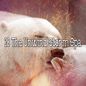 Album 28 The Unwind Storm Spa from Rain Sounds & White Noise