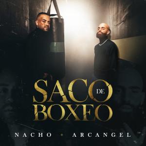 Nacho的專輯Saco De Boxeo