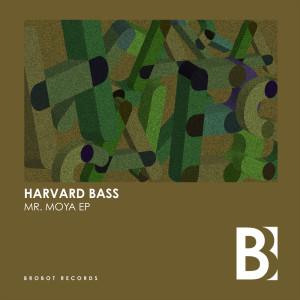 Album Mr. Moya EP from Harvard Bass