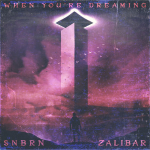 Album When You're Dreaming from SNBRN