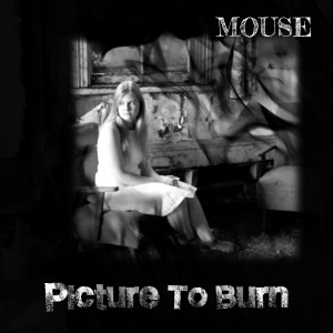 Album Picture To Burn from Mouse