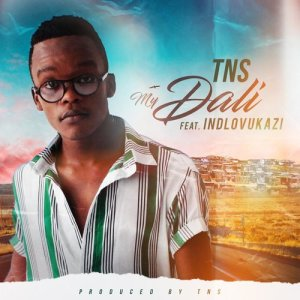 Listen to My Dali song with lyrics from TNS