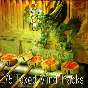 Yoga Music的專輯75 Taxed Mind Tracks