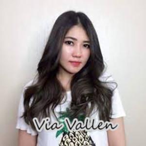 Via Vallen, Vol. 1 dari Via Vallen