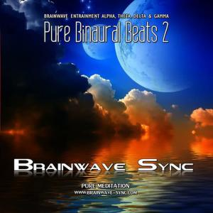 Album Pure Binaural Beats 2 - Alpha, Theta, Gamma and Delta Brainwave Entrainment - Music for Meditation from Brainwave-Sync