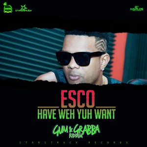 Album Have Weh Yuh Want - Single from Esco