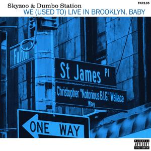 Album We (Used to) Live in Brooklyn, Baby from Skyzoo
