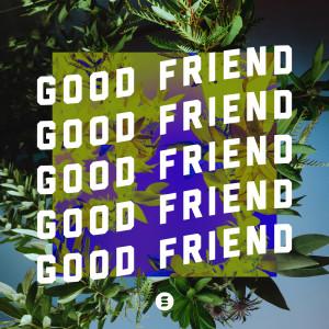 Album Good Friend from Switch