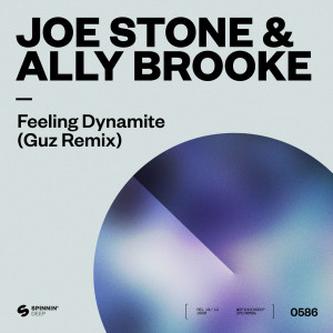 Ally Brooke的專輯Feeling Dynamite (Guz Remix)
