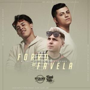Album Forró De Favela from MC Jhey