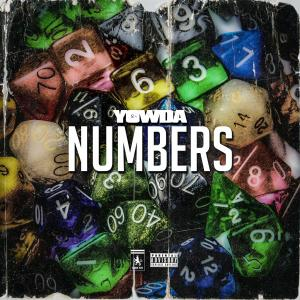 Album Numbers from Yowda