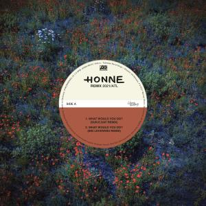 Album WHAT WOULD YOU DO? (feat. Pink Sweat$) (Remixes) from Honne