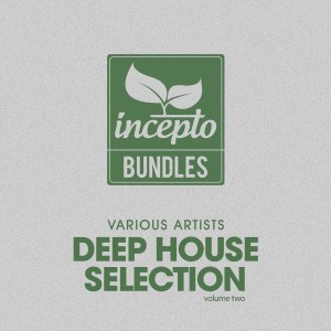Album Deep House Selection, Vol. 2 from Various Artists
