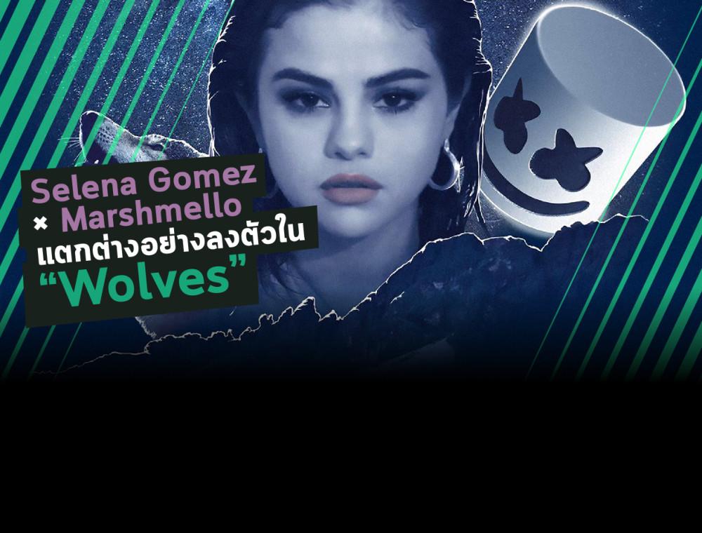 "Selena Gomez X Marshmello การรวมกันที่ลงตัวใน ""Wolves"""