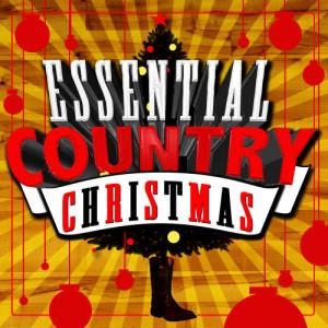 收聽New Country Holiday All-Stars的Winter Wonderland (Instrumental Version)歌詞歌曲