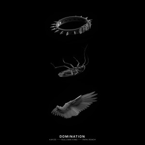 Album DOMINATION (Explicit) from Kayzo