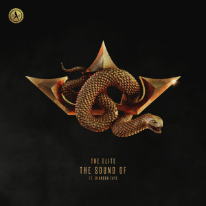 Album The Sound Of from Coone