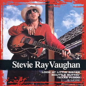 Steve Ray Vaughan的專輯Collections
