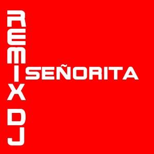 Album Señorita from Remix DJ