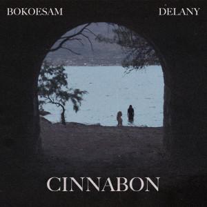 Album Cinnabun (Explicit) from Bokoesam