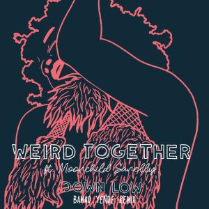Album Down Low (Bamao Yende Remix) from Weird Together