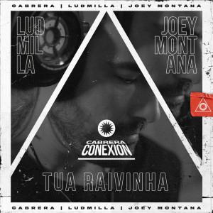Album Tua Raivinha from Cabrera