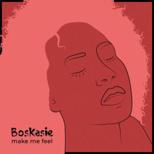 Album Make Me Feel from Boskasie