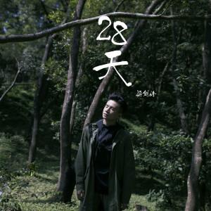 梁釗峰的專輯28天