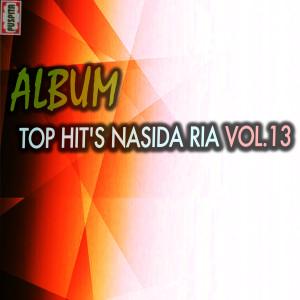 Top Hit's, Vol. 13