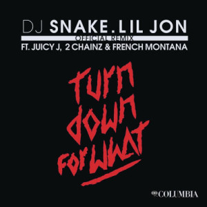 Listen to Turn Down for What (Official Remix) song with lyrics from DJ Snake