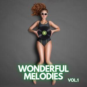 Album Wonderful Melodies vol.1 from Eric Hammerstein