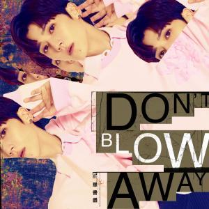 畢書盡的專輯Don't Blow Away