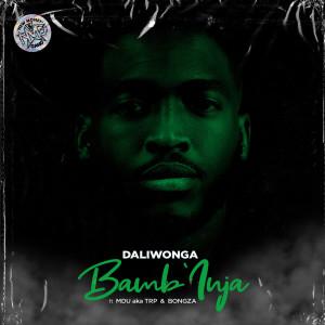 Album Bamb'Inja from DaliWonga