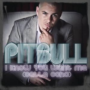 收聽Pitbull的I Know You Want Me (Calle Ocho) (More English Radio Edit)歌詞歌曲
