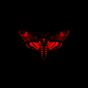 收聽Lil Wayne的Days And Days歌詞歌曲