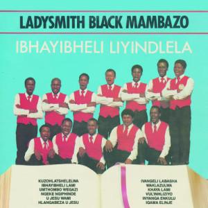 Ibhayibheli Liyindlela