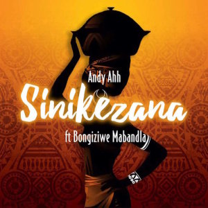 Album Sinikezana Single from Andy Ahh