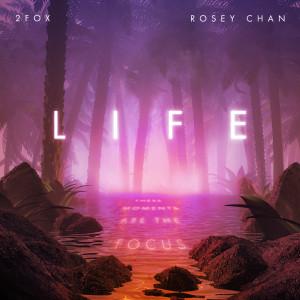 Album Life from 2Fox