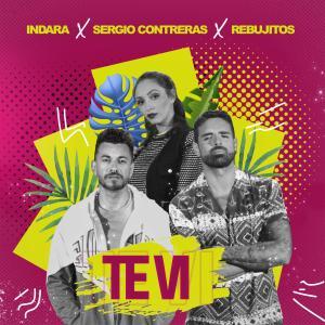 Album Te Vi from Los Rebujitos