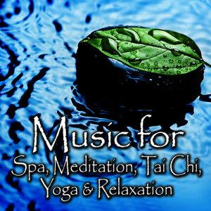 ดาวน์โหลดและฟังเพลง Gentle Thoughts - For Quiet Contemplation and Self Awareness พร้อมเนื้อเพลงจาก Spa Music Players