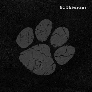 Ed Sheeran的專輯You Need Me, I Don't Need You (Explicit)