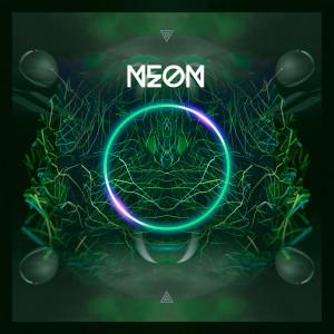 Album Neon from FLEXER