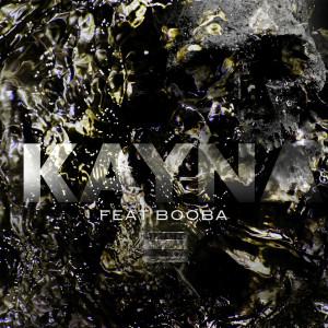 Album Kayna (Remix) (Explicit) from Booba