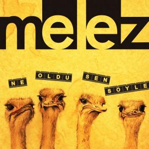 Album Ne Oldu Sen Söyle from Melez