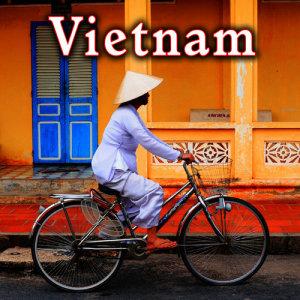 Sound Ideas的專輯Vietnam Sound Effects