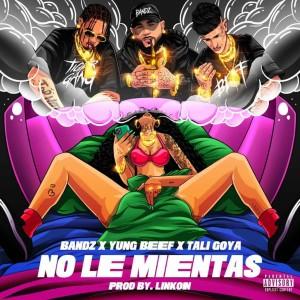 Album No Le Mientas (Explicit) from Tali Goya