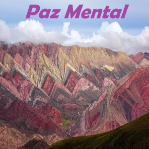 Album Paz Mental from Paz